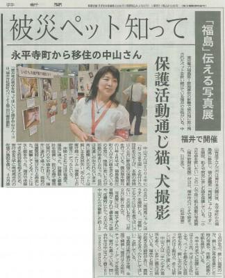 ねこさま写真展 南相馬 福井新聞