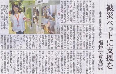 ねこさま写真展 南相馬 日刊県民福井新聞