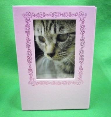 ペットメモリアルボックス ピンク