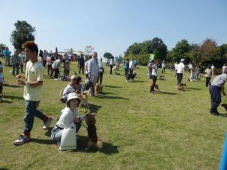 平成26年度 福井県動物愛護フェスティバル 写真31