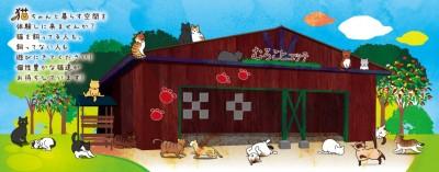 cat villageさん キャットヴィレッジ