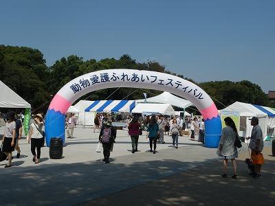 平成25年度 中央行事 動物愛護ふれあいフェスティバル14