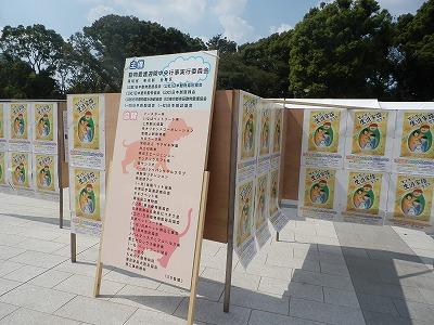 平成25年度 中央行事 動物愛護ふれあいフェスティバル16-2