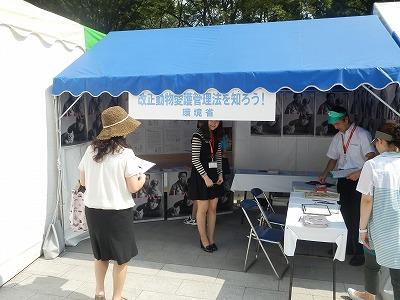 平成25年度 中央行事 動物愛護ふれあいフェスティバル16-4