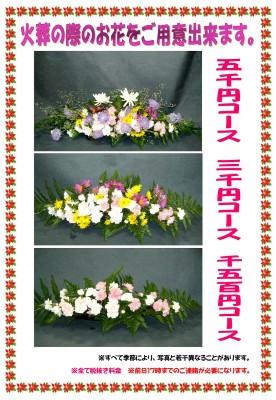 あいりぃさん各種お花
