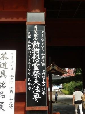 動物慰霊祭大法要2015 2-1