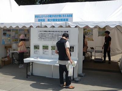 平成27年度 動物愛護週間中央行事 動物愛護ふれあいフェスティバル40