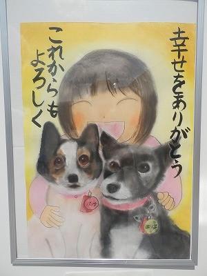 平成27年度 動物愛護週間中央行事 動物愛護ふれあいフェスティバル66