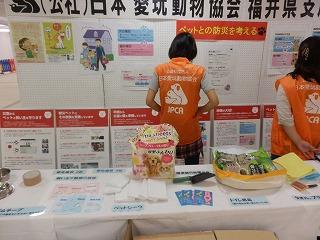 ペットとの防災を考える シピィ  2015.8.30 活動写真4