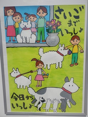 平成27年度 動物愛護週間中央行事 動物愛護ふれあいフェスティバル67