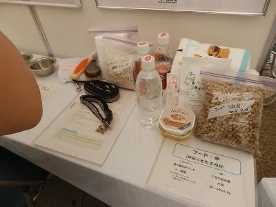 平成27年度 動物愛護週間中央行事 動物愛護ふれあいフェスティバル28-6