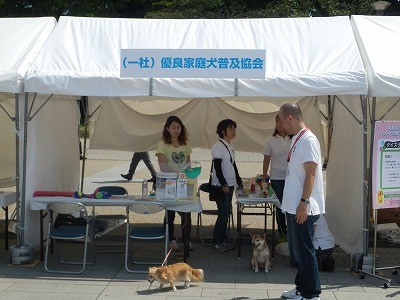 平成27年度 動物愛護週間中央行事 動物愛護ふれあいフェスティバル30