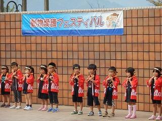 平成27年度 福井県動物愛護ふれあいフェスティバル15