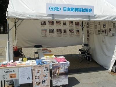平成27年度 動物愛護週間中央行事 動物愛護ふれあいフェスティバル47