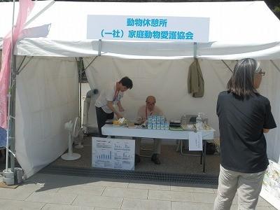 平成27年度 動物愛護週間中央行事 動物愛護ふれあいフェスティバル48
