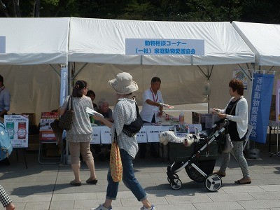 平成27年度 動物愛護週間中央行事 動物愛護ふれあいフェスティバル37