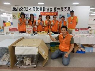 ペットとの防災を考える シピィ  2015.8.30 活動写真14