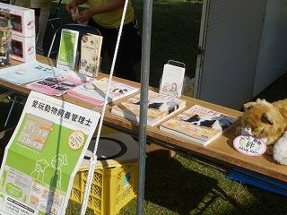 平成27年度 福井県動物愛護ふれあいフェスティバル6