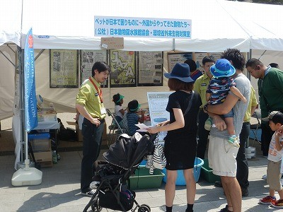 平成27年度 動物愛護週間中央行事 動物愛護ふれあいフェスティバル39