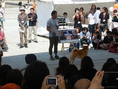 平成27年度 動物愛護週間中央行事 動物愛護ふれあいフェスティバル51