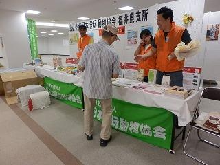 ペットとの防災を考える シピィ  2015.8.30 活動写真23