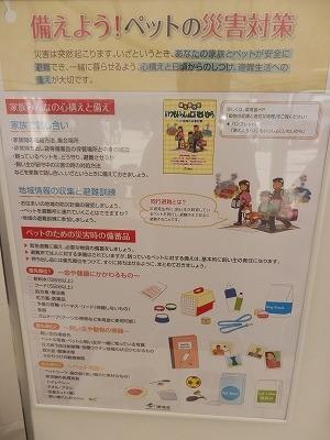 平成27年度 動物愛護週間中央行事 動物愛護ふれあいフェスティバル28-9