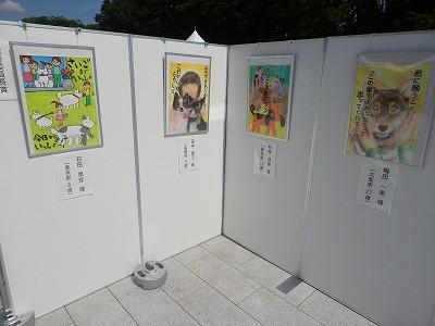 平成27年度 動物愛護週間中央行事 動物愛護ふれあいフェスティバル63