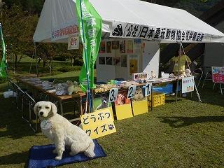 平成27年度 福井県動物愛護ふれあいフェスティバル5