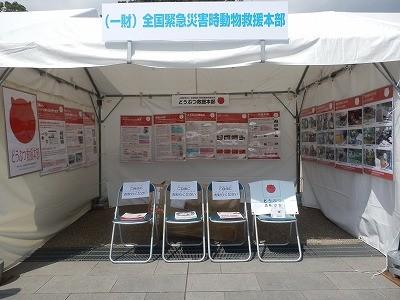 平成27年度 動物愛護週間中央行事 動物愛護ふれあいフェスティバル20