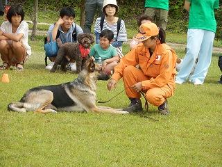 平成27年度 福井県動物愛護ふれあいフェスティバル60