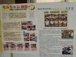 平成27年度 福井県動物愛護ふれあいフェスティバル45