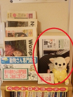 猫とも新聞2