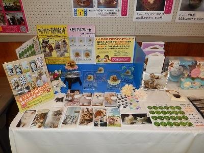 『愛するペットとのお別れ』 敦賀市セミナー 2015.11 メモリアルコーナー4
