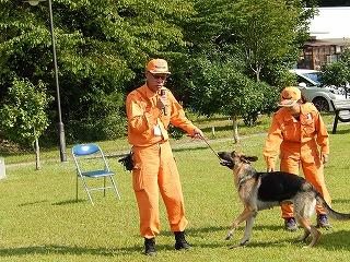 平成27年度 福井県動物愛護ふれあいフェスティバル101