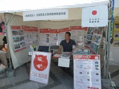 2015(公社)日本獣医師会 動物感謝デー4