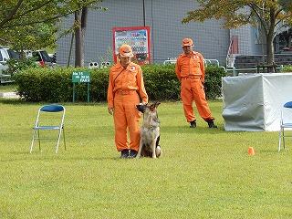 平成27年度 福井県動物愛護ふれあいフェスティバル97