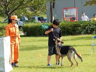 平成27年度 福井県動物愛護ふれあいフェスティバル99
