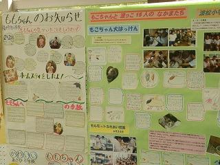 平成27年度 福井県動物愛護ふれあいフェスティバル49