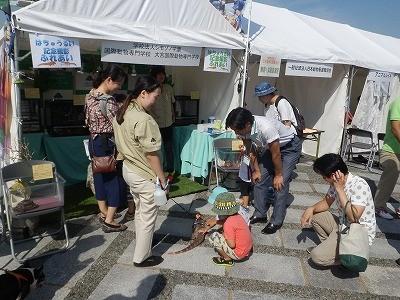 2015(公社)日本獣医師会 動物感謝デー35