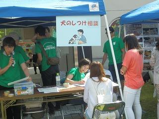 平成27年度 福井県動物愛護ふれあいフェスティバル53
