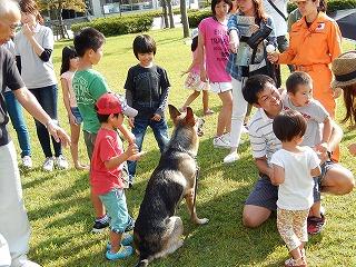 平成27年度 福井県動物愛護ふれあいフェスティバル102