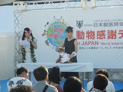 2015(公社)日本獣医師会 動物感謝デー8