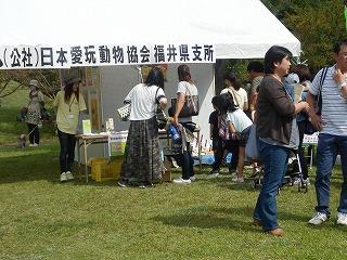 平成27年度 福井県動物愛護ふれあいフェスティバル35