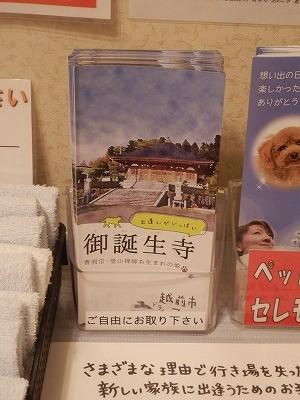 御誕生寺さん 猫の日 2016.2.22 供養祭17