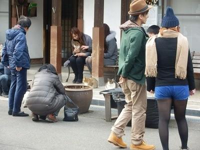 御誕生寺さん 猫の日 2016.2.22 供養祭13