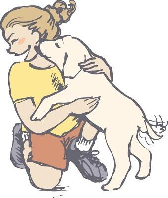 犬しつけ画像