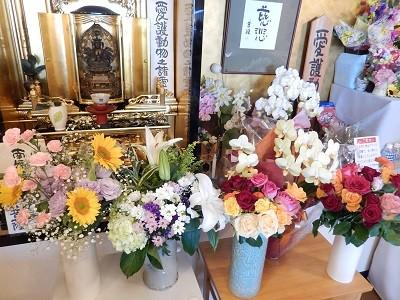 H28 2016 年供養祭 おおぞらに供花