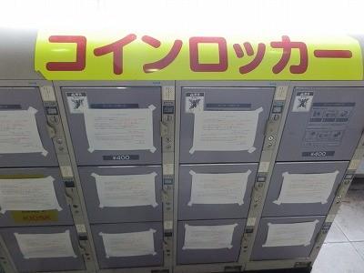猫カフェモカ澁谷27