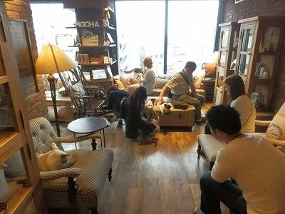 猫カフェモカ澁谷7