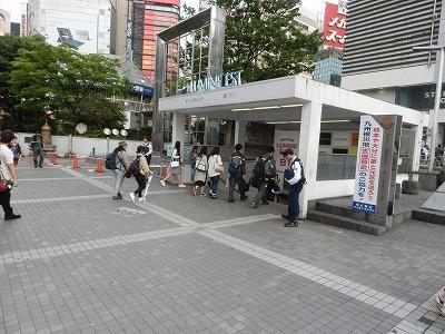 猫カフェモカ澁谷26